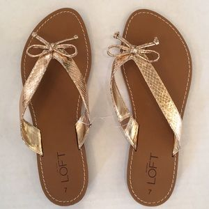 Loft Metallic Gold Slides  NWT